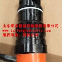 廠家直銷泰豐直動溢流閥DBDS20K10/31.5