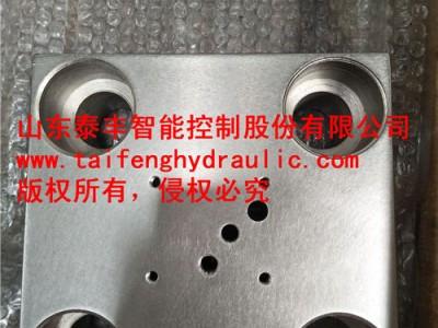 供應TLFA63WEA-7X型插裝閥蓋板