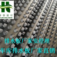 (2.5公分)南京地下室底板排水板徐州车库顶板排水板