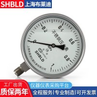 耐震不锈钢压力表YTF-100Z布莱迪Y100FY150BF